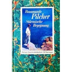 Stürmische Begegnung. Von Rosamunde Pilcher (1997).