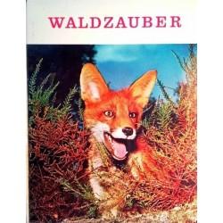 Waldzauber. Von Oscar Schmid (1959).