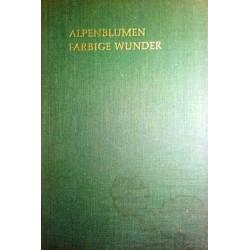 Alpenblumen. Farbige Wunder. Von Paula Kohlhaupt (1963).