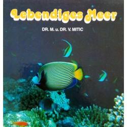 Lebendiges Meer. Von Michael Mitic (1992).