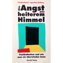 Die Angst aus heiterem Himmel. Von Christine Brasch (1994).