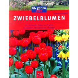 Zwiebelblumen. Von Katharina Adams (2003).